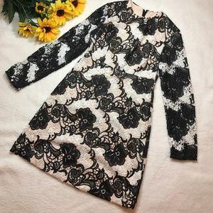 NWT Topshop Lace Long Sleeve Dress